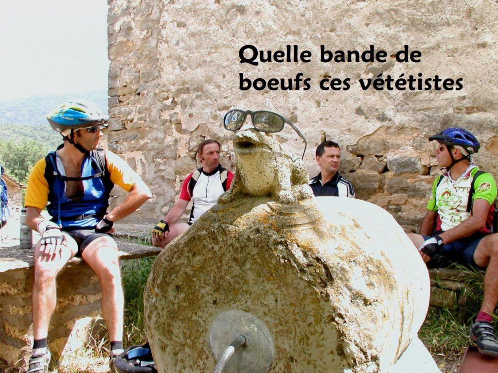 Boeufs